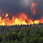 هشدار / خطر آتش سوزی جنگلها و مراتع کشور