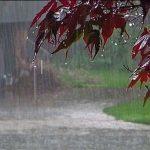 تدابیر شهرداری پایتخت برای بارش نزولات آسمانی