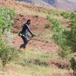 اجرای مسیرهای آتشبر در اراضی جنگلکاری شرق تهران