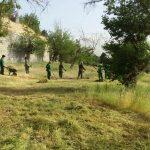 آغاز عملیات به زراعی فضای سبز منطقه ۱۳ تهران