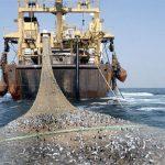 ضرورت جایگزینی آبزی پروری با صید ترال