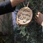 غرس نهال به یاد ورزشکار نام، «علی انصاریان»