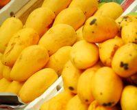 آشنایی با فواید و ویژگی های میوه «انبه»